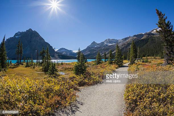 hiking trail bow lake banff np canada - bow river stock pictures, royalty-free photos & images