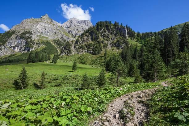 Hiking trail in the Baergunttal, behind Kleiner Widderkopf and Widderkopf, near Baad, Kleinwalsertal, Allgaeu Alps, Allgaeu, Vorarlberg, Austria