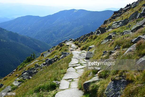 Hiking trail in the mountains, Low Tatras, Slovakia