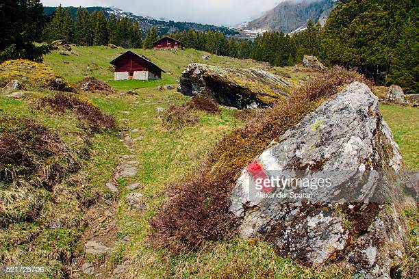 Hiking trail mark in Swiss Alps near Grindelwald village, Canton of Bern, Switzerland