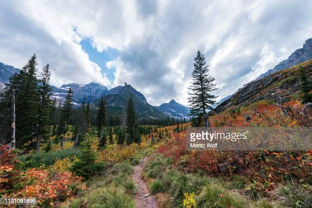 hiking trail through mountain landscape in autumn to upper two medicine lake, glacier national park, montana, usa - two medicine lake montana fotografías e imágenes de stock