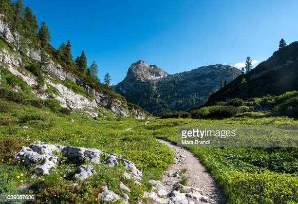 Hiking trail to Kaerlingerhaus, behind Viehkogel summit, Berchtesgaden National Park, Berchtesgadener Land, Upper Bavaria, Bavaria, Germany