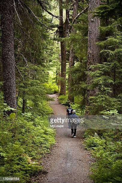 Hiking trail, Winner Creek, Chugach National Forest, Alaska, United States.