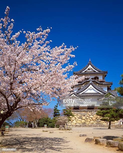 Hikone Castle, Hikone, Shiga Prefecture, Japan.