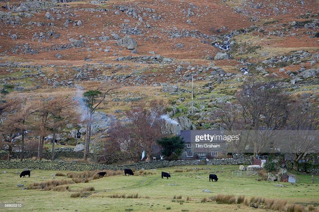 Hill farm in Snowdonia National Park, North Wales, United Kingdom.