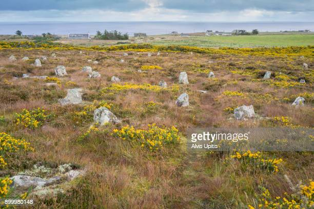 Hill 'O Many Stanes, an ancient Pictish site ner Lybster, Scotland