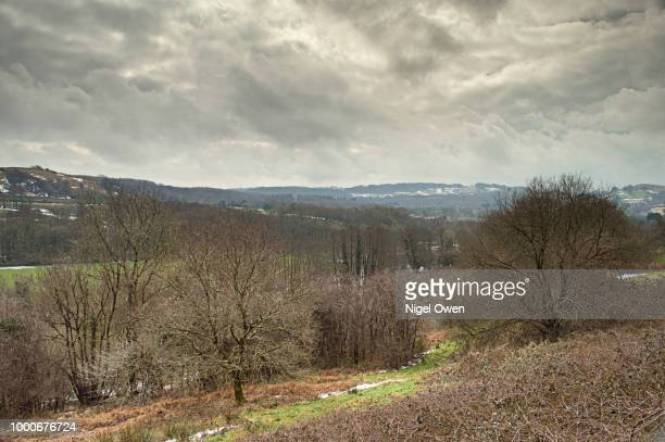 hills and fields - nigel owen stock pictures, royalty-free photos & images