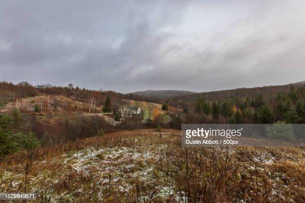 Hills and forest with houses at winter