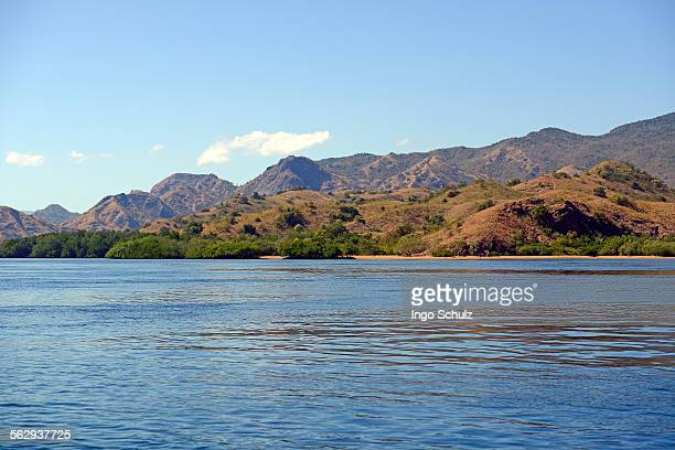 hills and grassland of rinca island, komodo national park, unesco world heritage site, indonesia - rinca island stock pictures, royalty-free photos & images