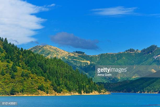 Hills of Marlborough Sounds, New Zealand