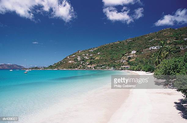 hillside houses above tropical island beach - cane garden bay stock pictures, royalty-free photos & images