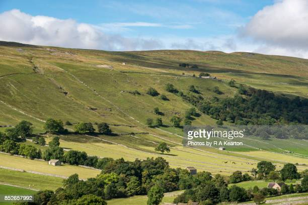 Hillside of traditional stone barns and field patterns, Kettlewell, Yorkshire Dales