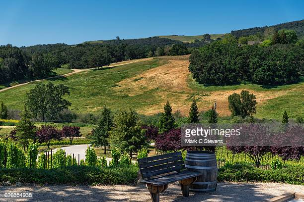 A Hillside Setting to Take in Paso Robles