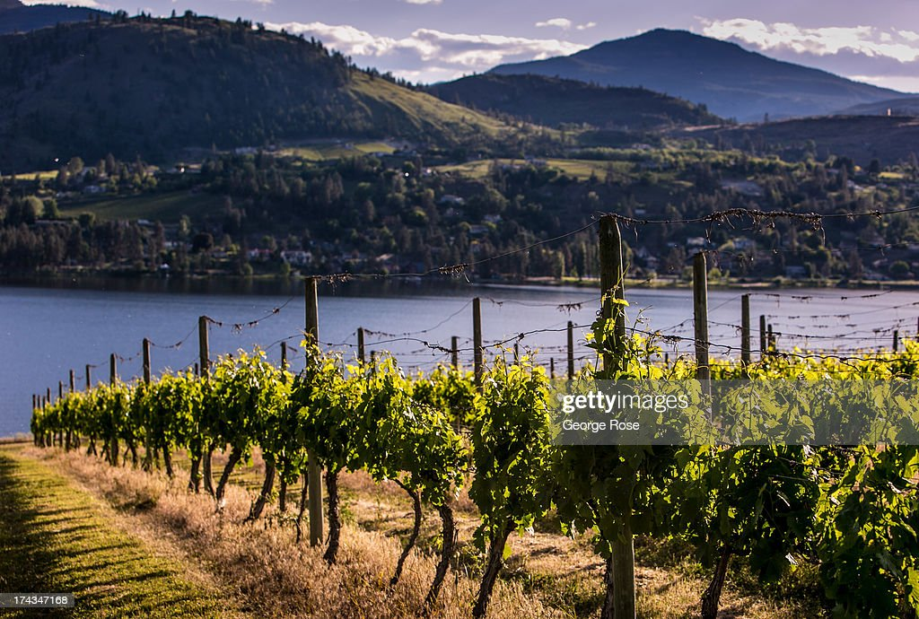 Exploring British Columbia's Okanagan Valley : News Photo