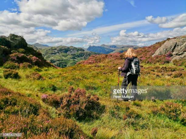 a hillwalker looks out to the distant langdale pikes; english lake district - solitude stock pictures, royalty-free photos & images