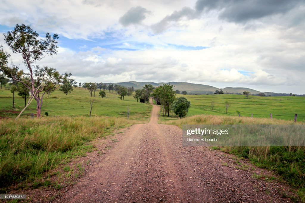 Hilly Dirt Road 2 : Stock Photo