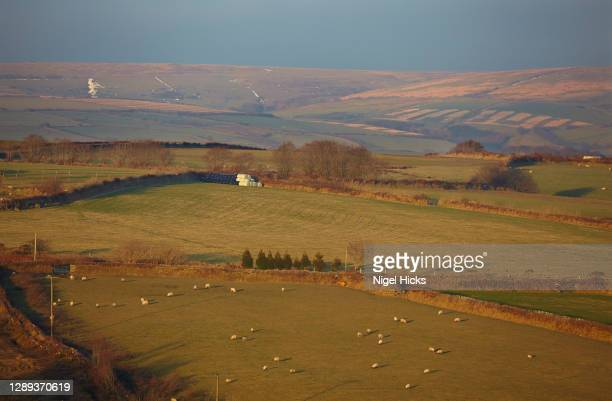 hilly farmland during early winter; in exmoor national park, devon, great britain. - exmoor national park stock pictures, royalty-free photos & images