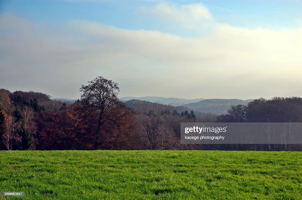 Hilly landscape : Stock Photo