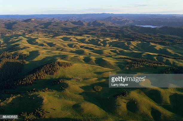 hilly landscape - black hills stock photos and pictures