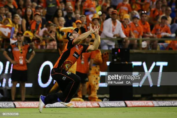 Hilton Cartwright of the Scorchers takes a catch off Cameron White of the Renegades later to be a No ball during the Big Bash League match between...