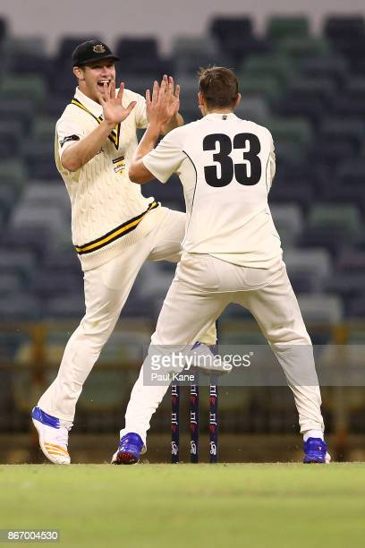 Hilton Cartwright of Western Australia celebrates with Simon Mackin after running out Jake Doran of the Tigers during day two of the Sheffield Shield...