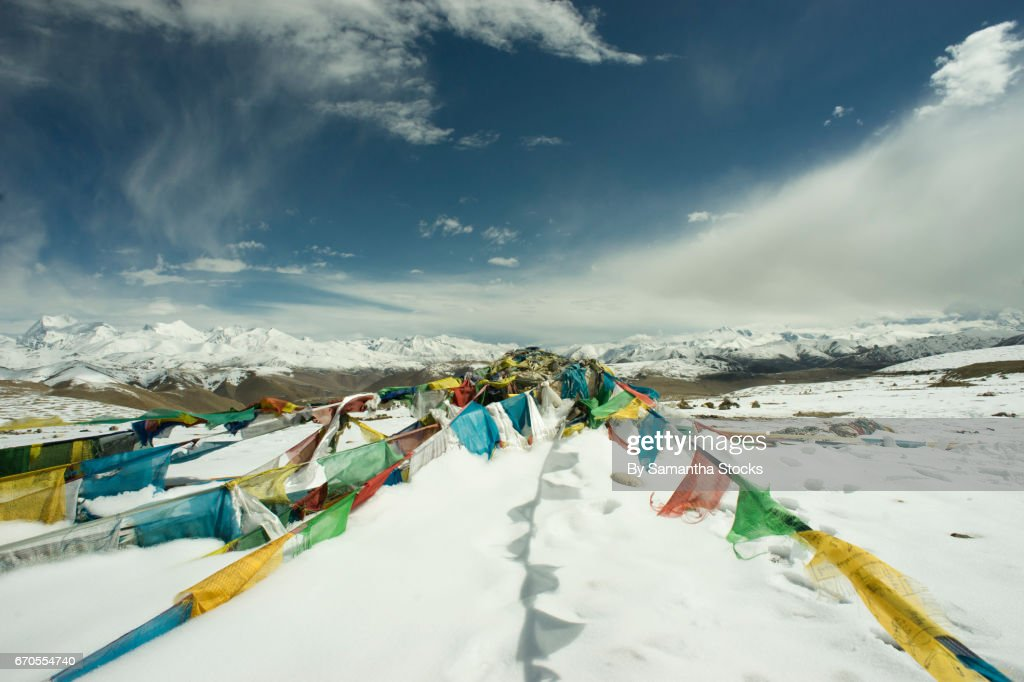 Himalayan prayer flags : Stock Photo