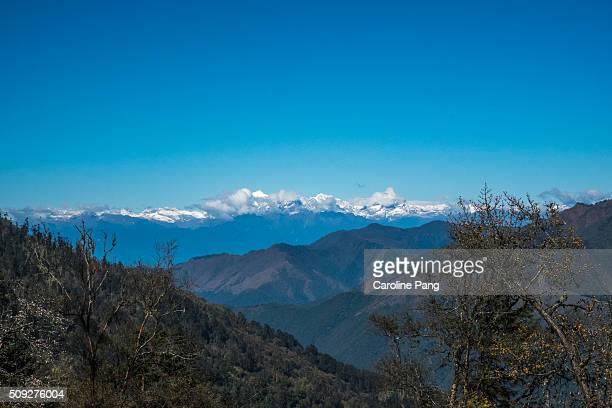 himalayas of bhutan - caroline pang stock pictures, royalty-free photos & images