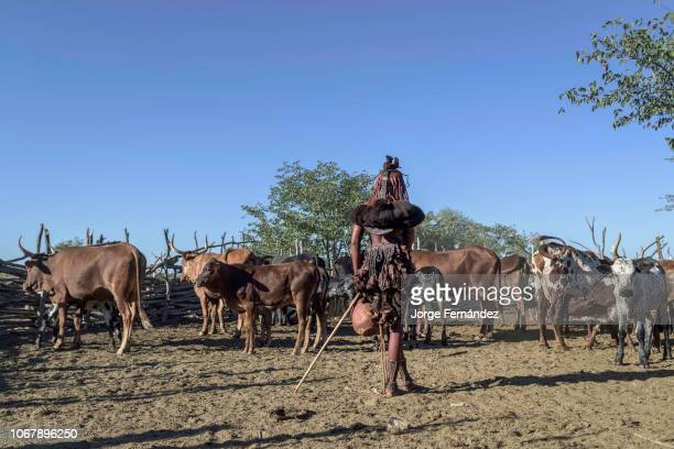 Himba woman standing inside the corral ready to milk the cows.