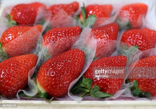 Himebijin strawberries sit on individual lining sheets in a box at Okuda Farm in Hashima, Gifu Prefecture, Japan, on Tuesday, Jan. 14, 2013. The farm...