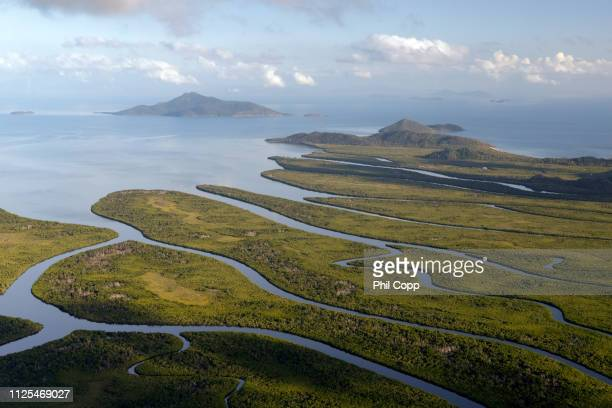hinchinbrook island aerial - riachuelo fotografías e imágenes de stock
