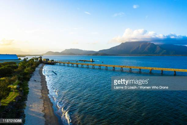hinchinbrook island - lianne loach stock pictures, royalty-free photos & images