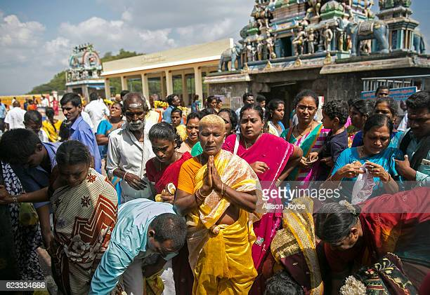 Hindu devotee with turmeric on her shaved head prays at the Thiruthani Murugan Temple November 14 2016 in Thiruttani India The process of shaving...