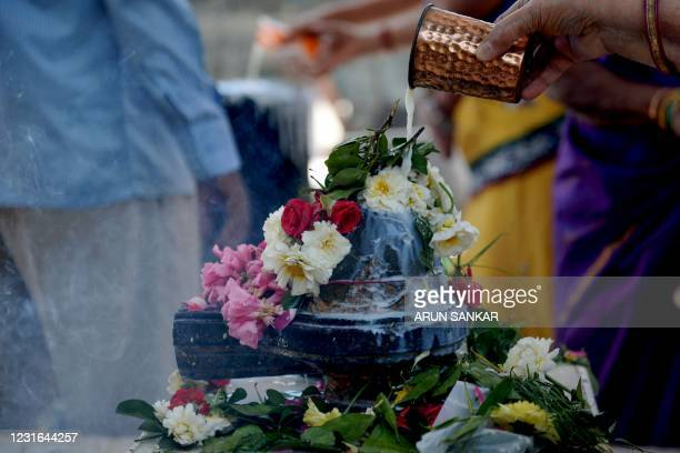 Hindu devotees perform rituals to a Shiva Lingam, a stone sculpture representing the phallus of the Hindu Deity Shiva, on the occasion of the Maha...