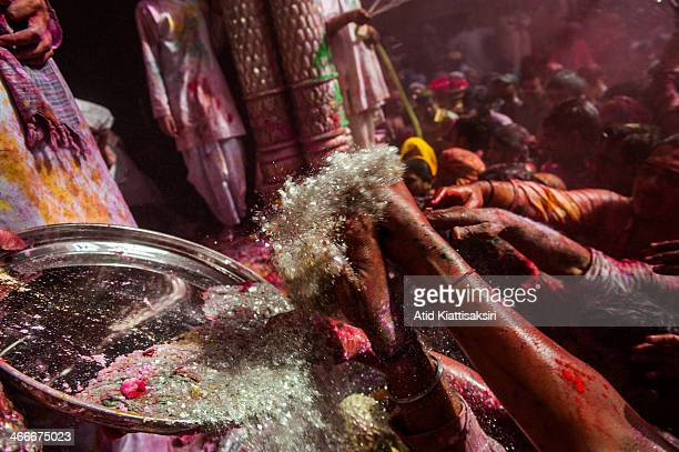 Hindu devotees receive holy grasses in front of a statue of Lord Kishna in the Banke Bihari temple Known as the festival of colours Holi is an...