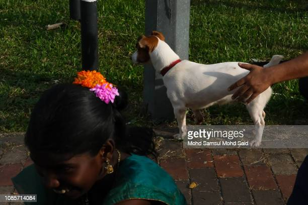 A Hindu devotees smiles as a dog standing behind him at the Batu Caves temple during Thaipusam festivals on January 21 2019 outside Kuala Lumpur...