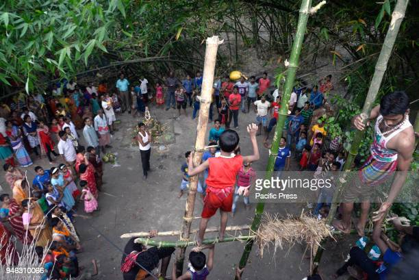 Hindu devotees throw fruits from the holy pole as Prasad during the Charak Puja festival Bengali observes Charak Puja on the last day of Bengali...