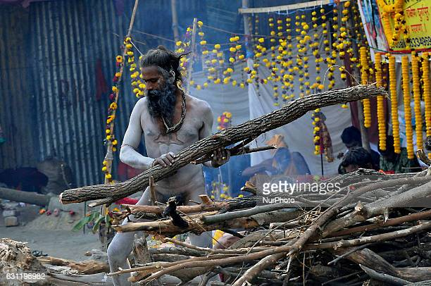 A Hindu holy Naga Sadu at the temporary Gangasagar Mela Camp during the MAKARSANKANTRI festival in KolkataWest Bengal India on January 082017 in India