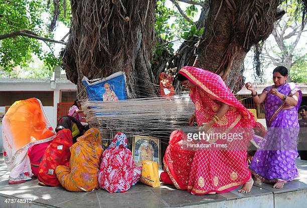 Savitri Savitri Married Gg: Vat Savitri Puja Stock Photos And Pictures