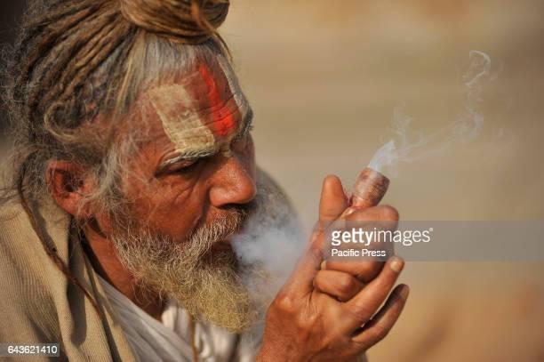 Hindu Sadhu or Holy Man smokes marijuana at the premises of Pashupatinath Temple Thousands of Hindu Sadhu or Holy man from India and Nepal come to...