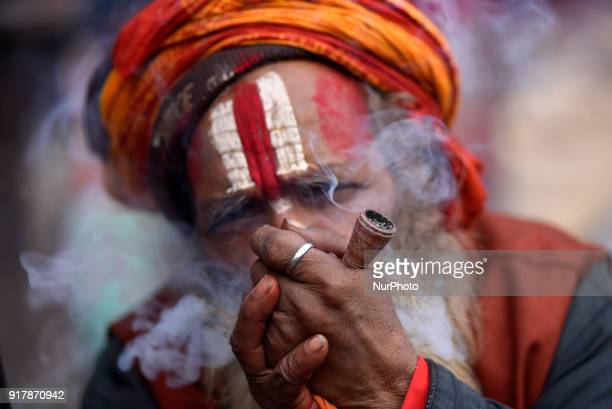 A Hindu Sadhu or Holy Man smokes marijuana at the premises of Pashupatinath Temple during the celebration of Maha Shivaratri Festival at Kathmandu...