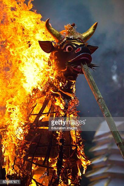 Hindu Style Cremation Where The Dead Body Is Burned Inside A Wooden Bull Ubud Bali Indonesia