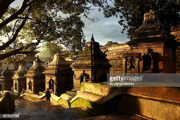 hindu temple - pashupatinath stock pictures, royalty-free photos & images