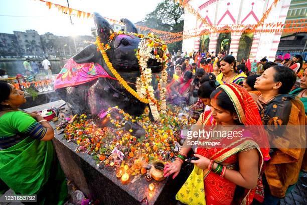 Hindu woman seen offering prayers with milk & water on the idol of Lord Shiva during Maha Shivaratri Festival at a temple of Kolkata.