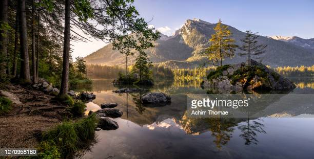 hintersee, berchtesgadener land, bavaria, germany, europe - idyllic stock-fotos und bilder