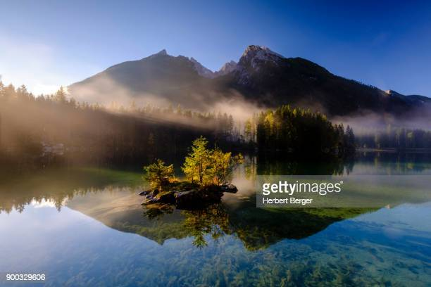 hintersee lake with morning mist, rear high cold, berchtesgaden national park, ramsau, upper bavaria, bavaria, germany - berchtesgaden national park stock photos and pictures