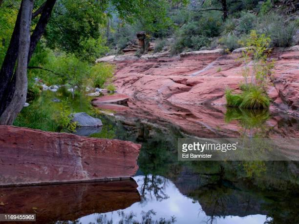 hints of autumn peace oak creek canton sandstone - oak creek canyon - fotografias e filmes do acervo