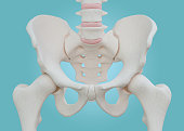 Hip Skeleton on blue background.