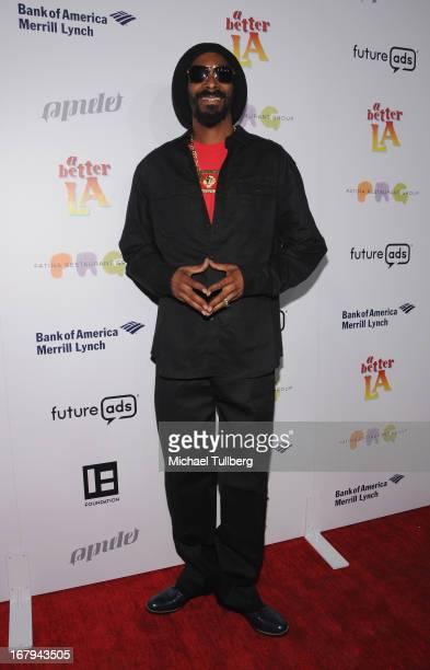 Hiphop artist Snoop Lion attends A Better LA's An Evening With A View Annual Gala at ATT Center on May 2 2013 in Los Angeles California