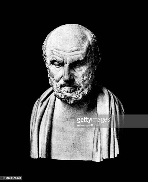 hippocrates of kos bust statue - history stock pictures, royalty-free photos & images