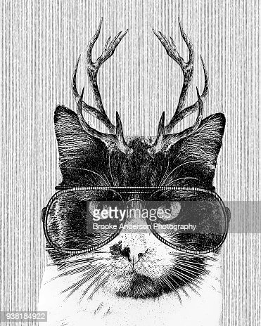 Hipster Cat Illustration With Antlers And Glasses